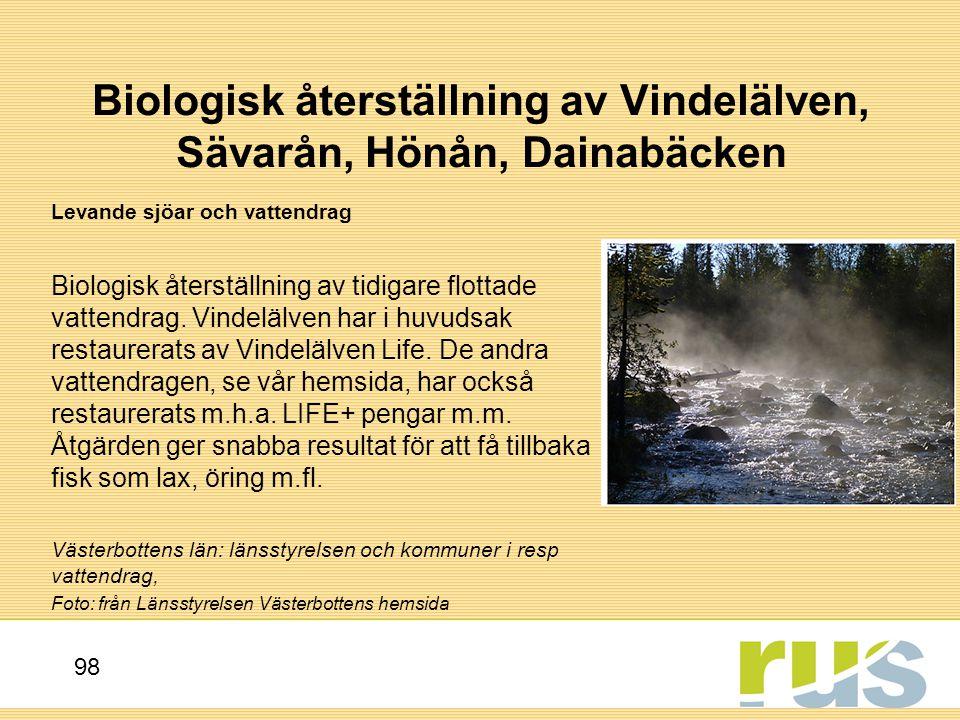 Biologisk återställning av Vindelälven, Sävarån, Hönån, Dainabäcken