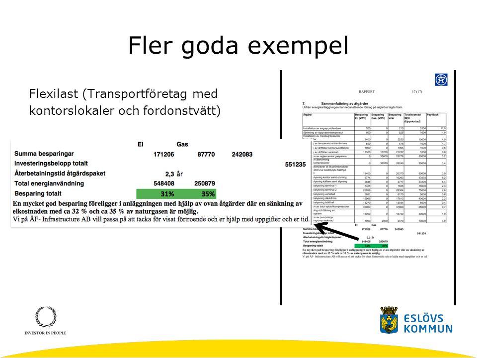 Fler goda exempel Flexilast (Transportföretag med