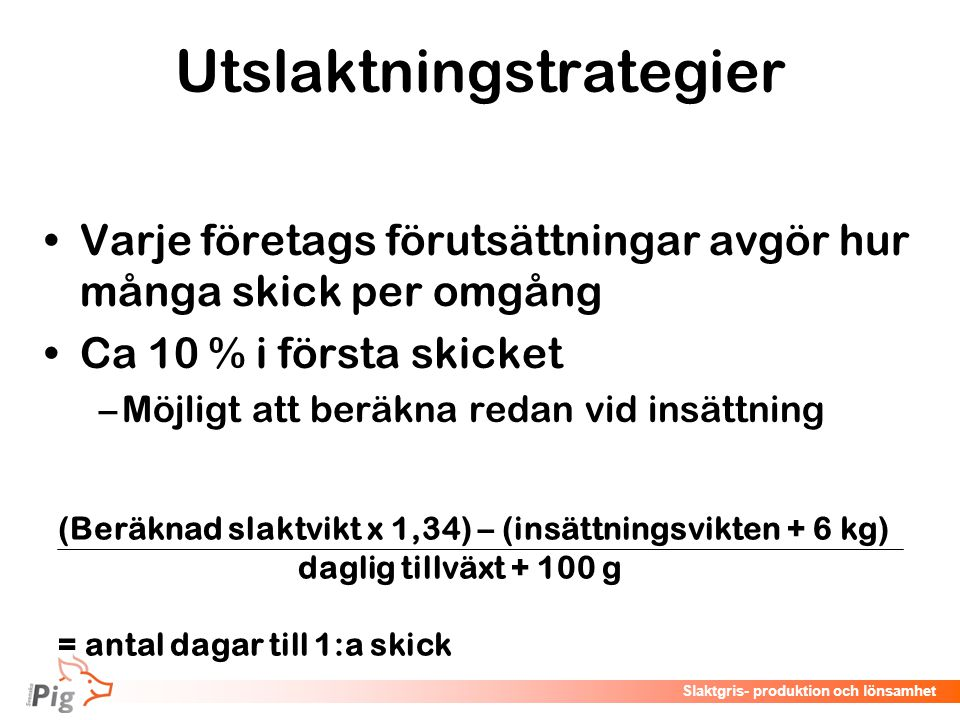Utslaktningstrategier