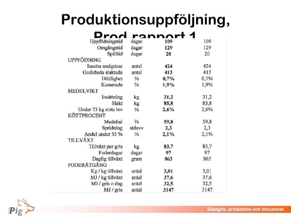 Produktionsuppföljning, Prod.rapport 1