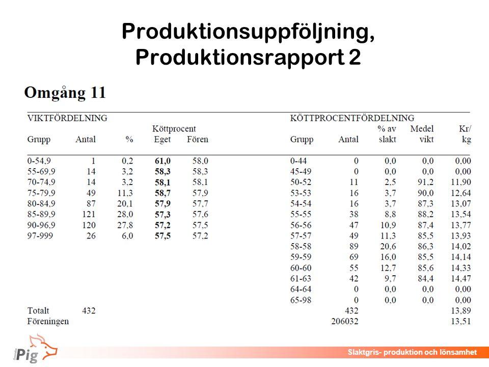 Produktionsuppföljning, Produktionsrapport 2