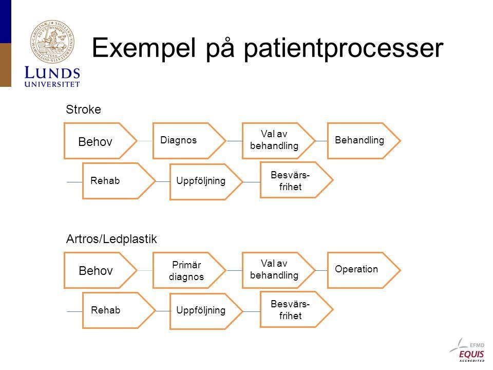 Exempel på patientprocesser