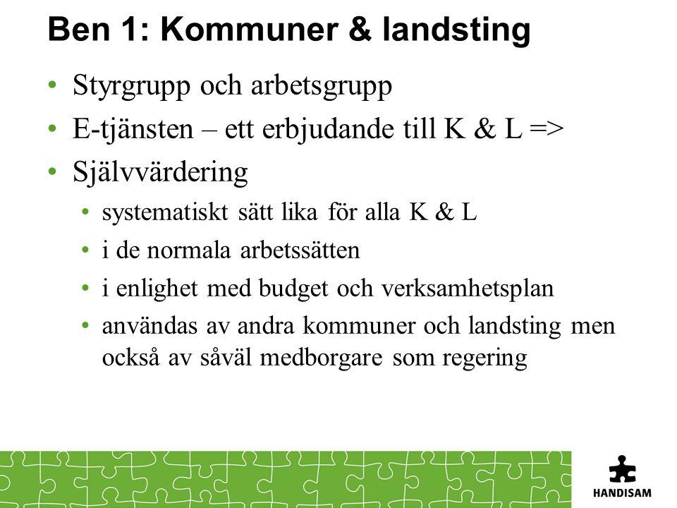 Ben 1: Kommuner & landsting