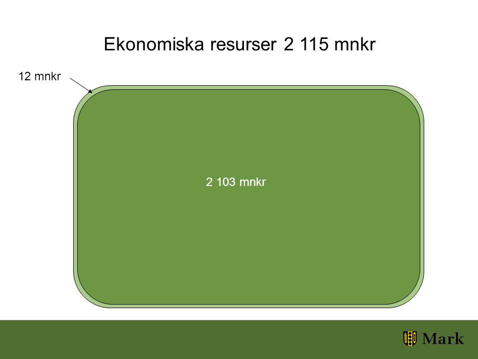 Ekonomiska resurser 2 115 mnkr