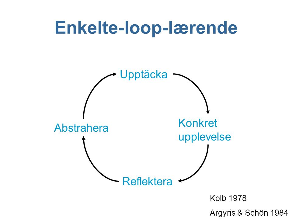 Enkelte-loop-lærende