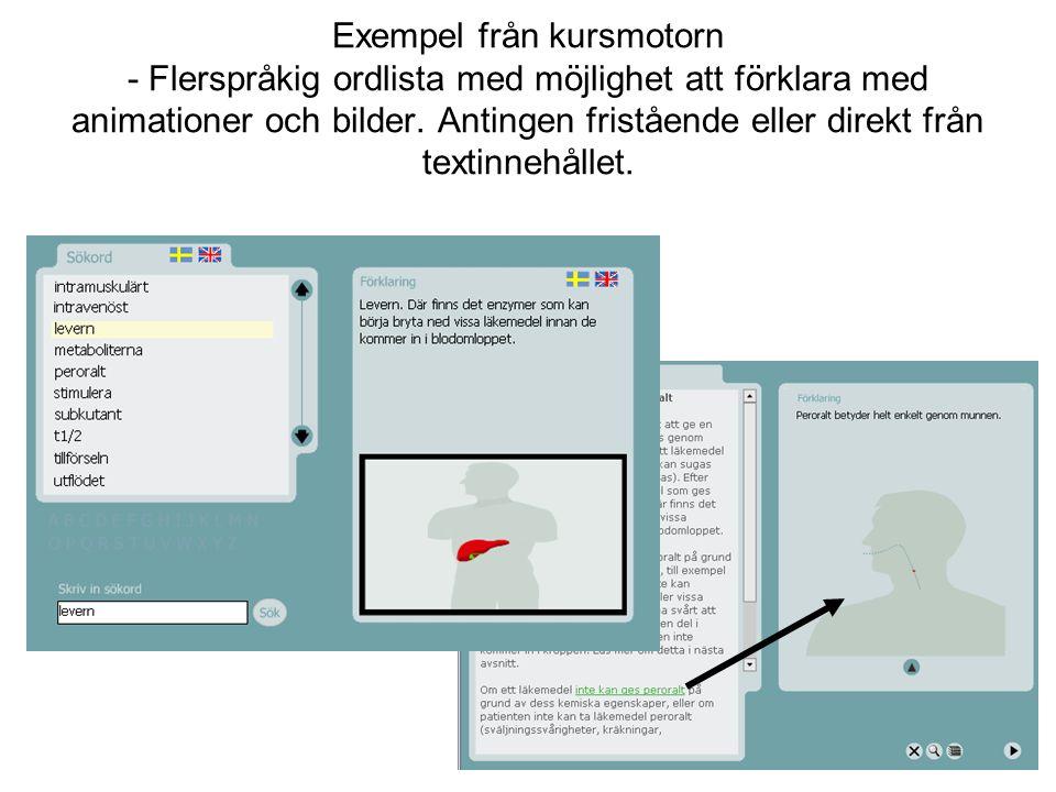 Exempel från kursmotorn - Flerspråkig ordlista med möjlighet att förklara med animationer och bilder.