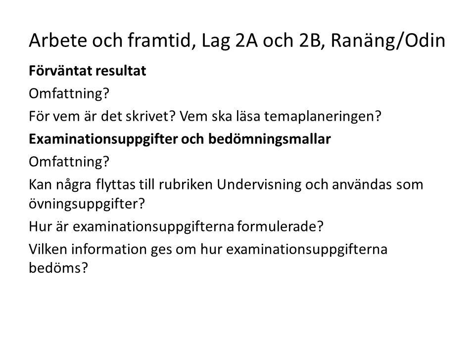 Arbete och framtid, Lag 2A och 2B, Ranäng/Odin