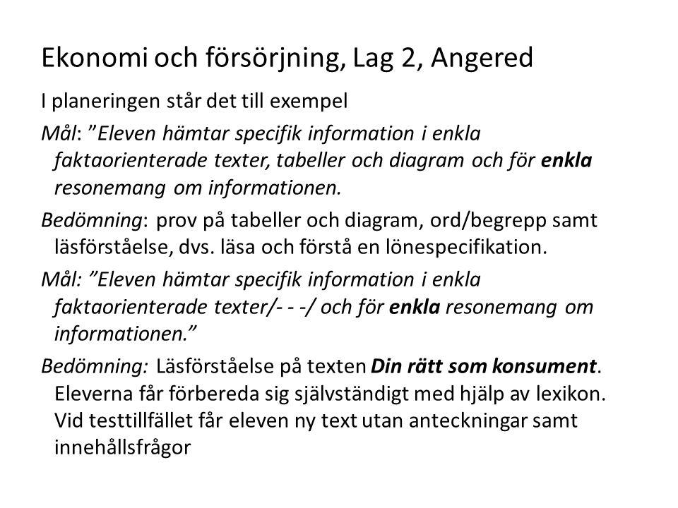 Ekonomi och försörjning, Lag 2, Angered