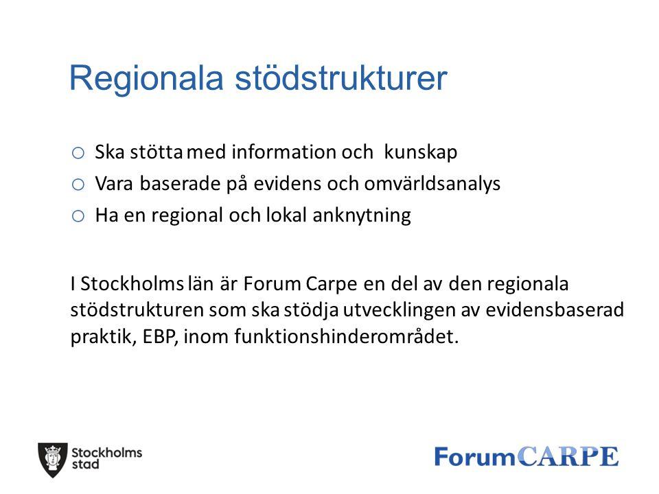 Regionala stödstrukturer