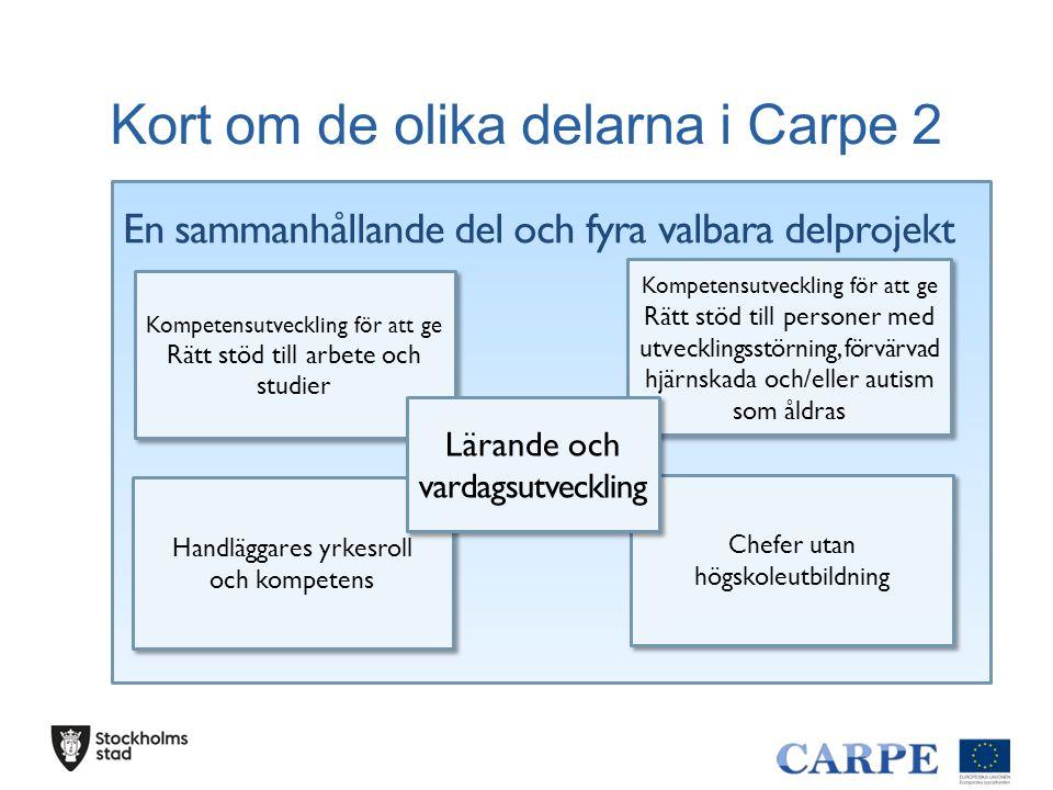 Kort om de olika delarna i Carpe 2