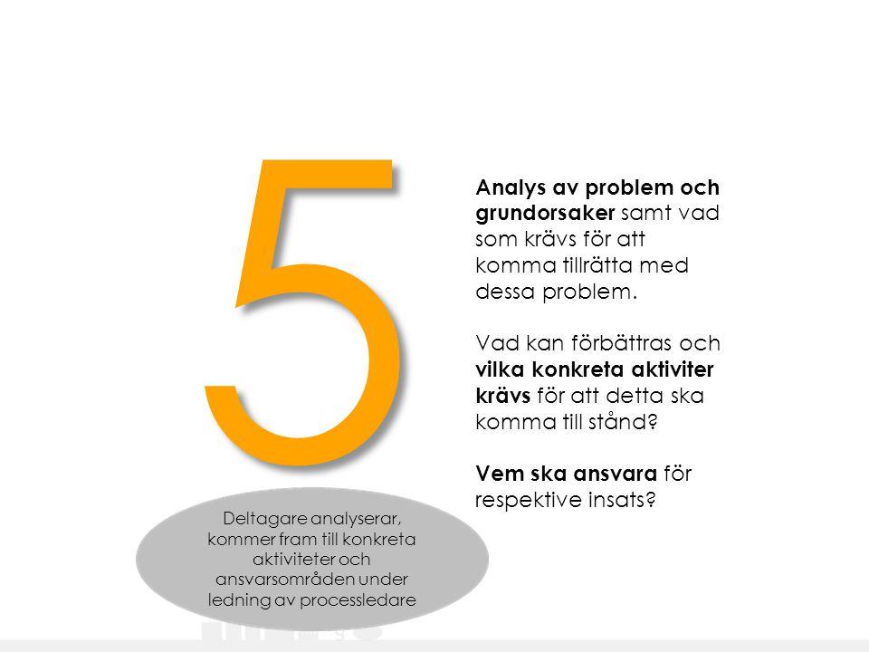 5 Analys av problem och grundorsaker samt vad som krävs för att komma tillrätta med dessa problem.