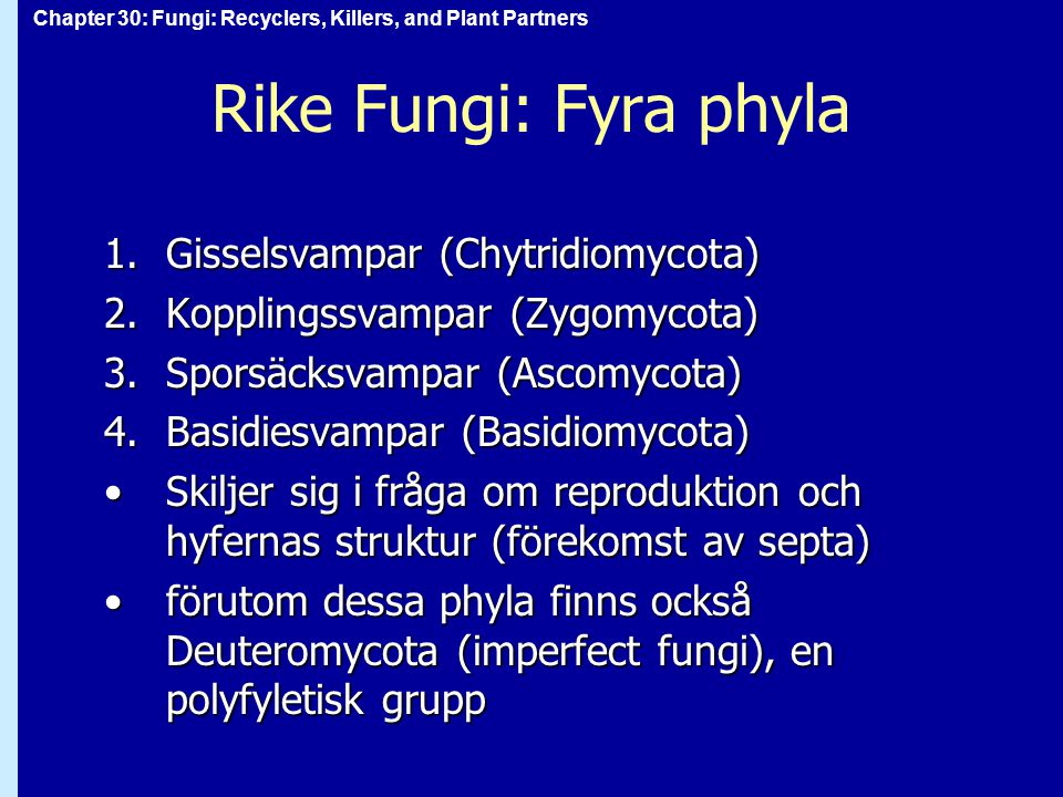 Rike Fungi: Fyra phyla Gisselsvampar (Chytridiomycota)