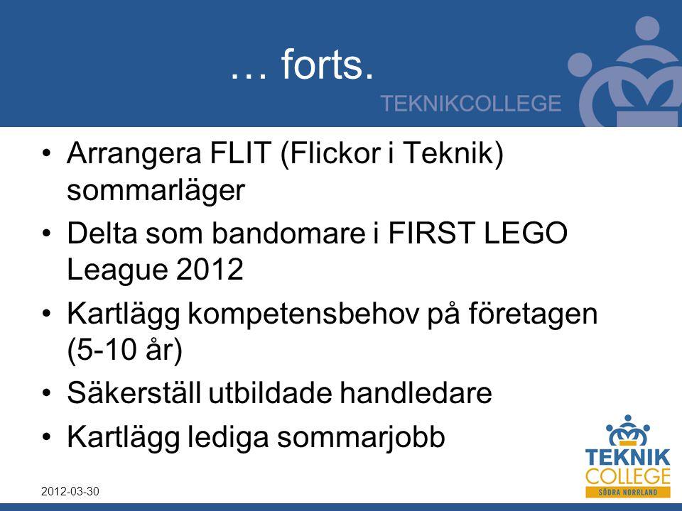 … forts. Arrangera FLIT (Flickor i Teknik) sommarläger