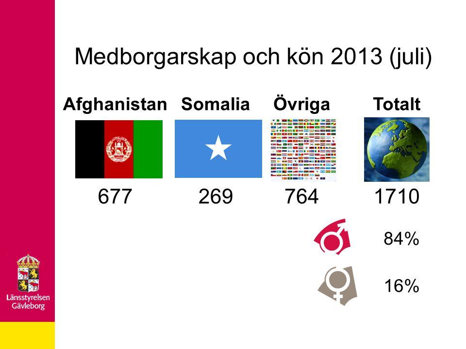 Medborgarskap och kön 2013 (juli)