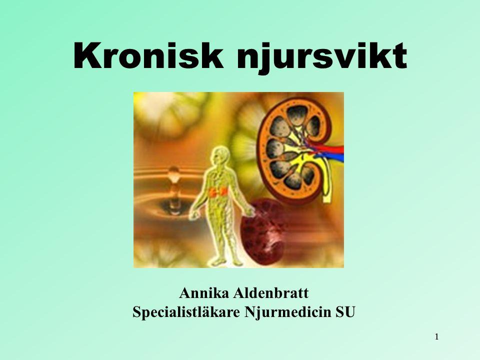 Annika Aldenbratt Specialistläkare Njurmedicin SU