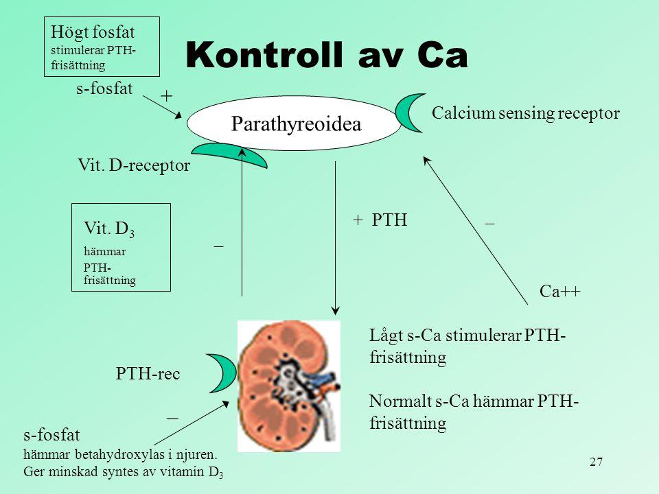 Kontroll av Ca + Parathyreoidea −