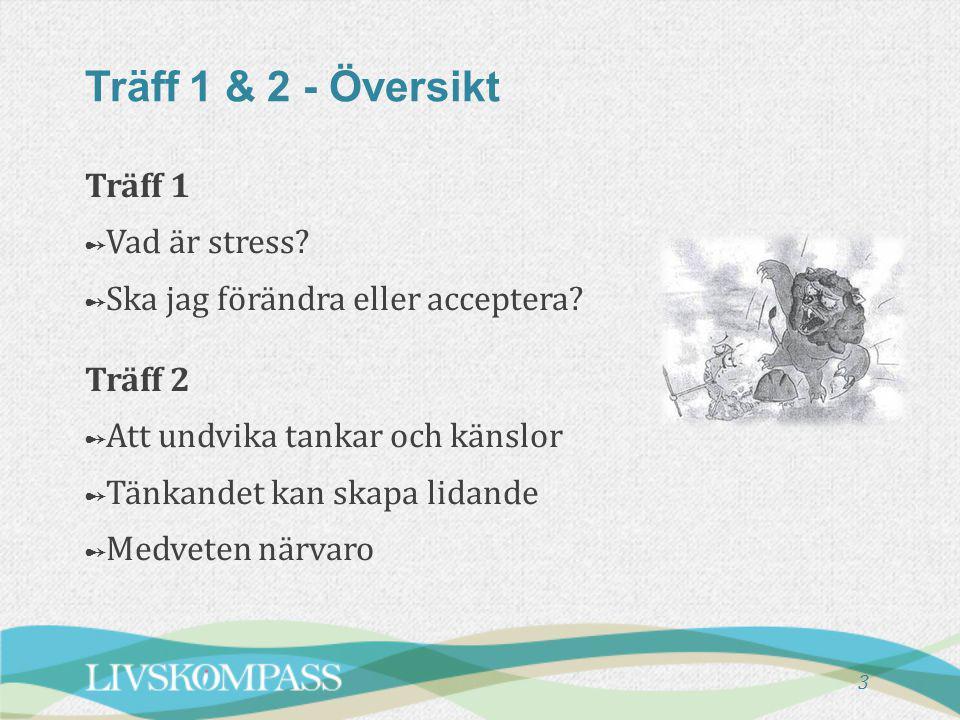 Träff 1 & 2 - Översikt Träff 1 Vad är stress