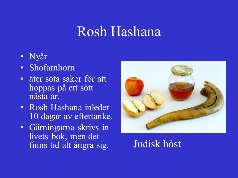 Rosh Hashana Judisk höst Nyår Shofarnhorn.