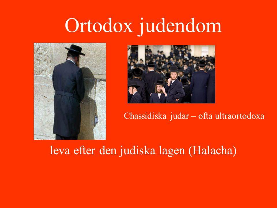 leva efter den judiska lagen (Halacha)
