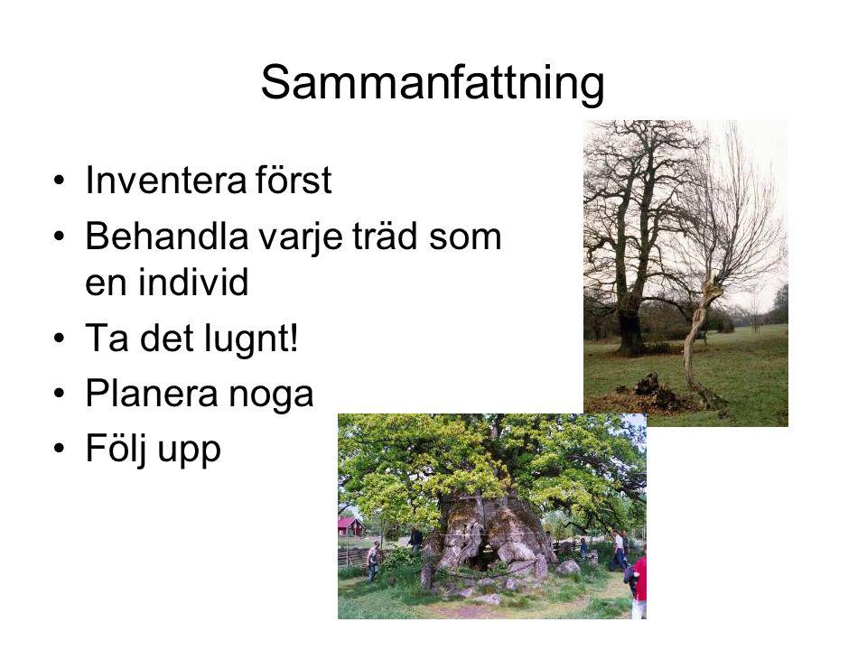 Sammanfattning Inventera först Behandla varje träd som en individ
