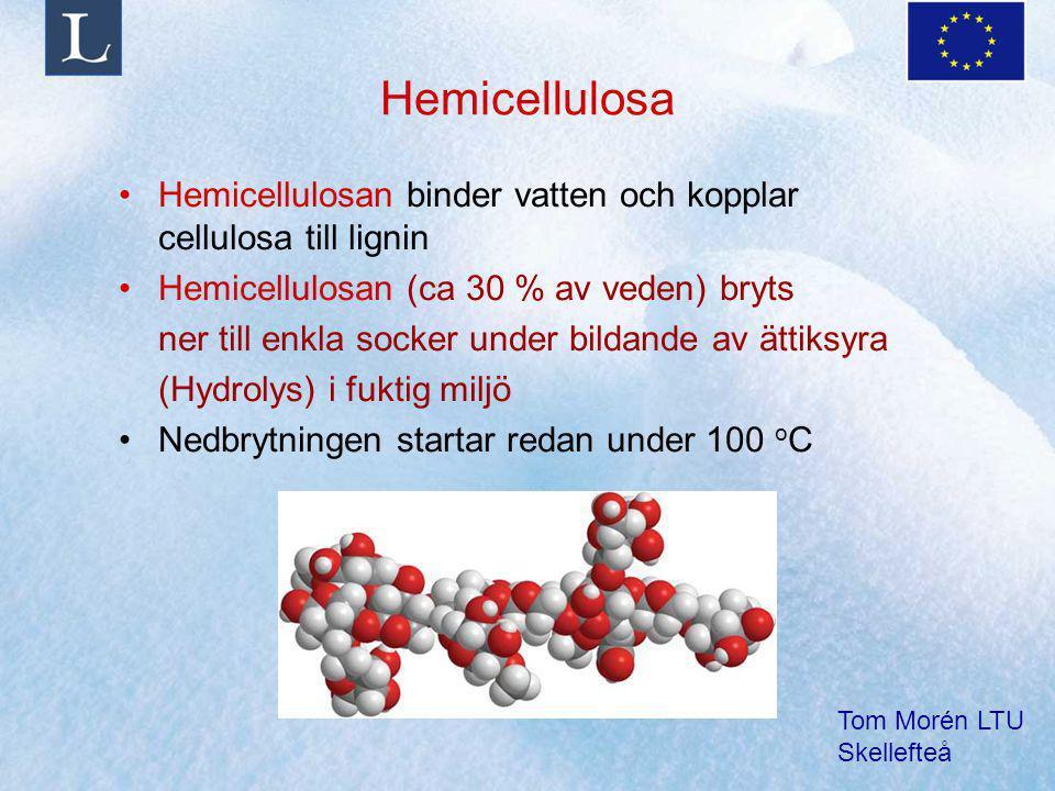 Hemicellulosa Hemicellulosan binder vatten och kopplar cellulosa till lignin. Hemicellulosan (ca 30 % av veden) bryts.