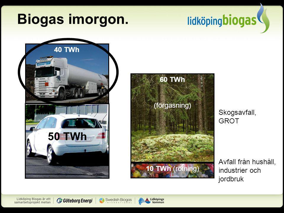 Biogas imorgon. 50 TWh 40 TWh 60 TWh (förgasning) 60 TWh