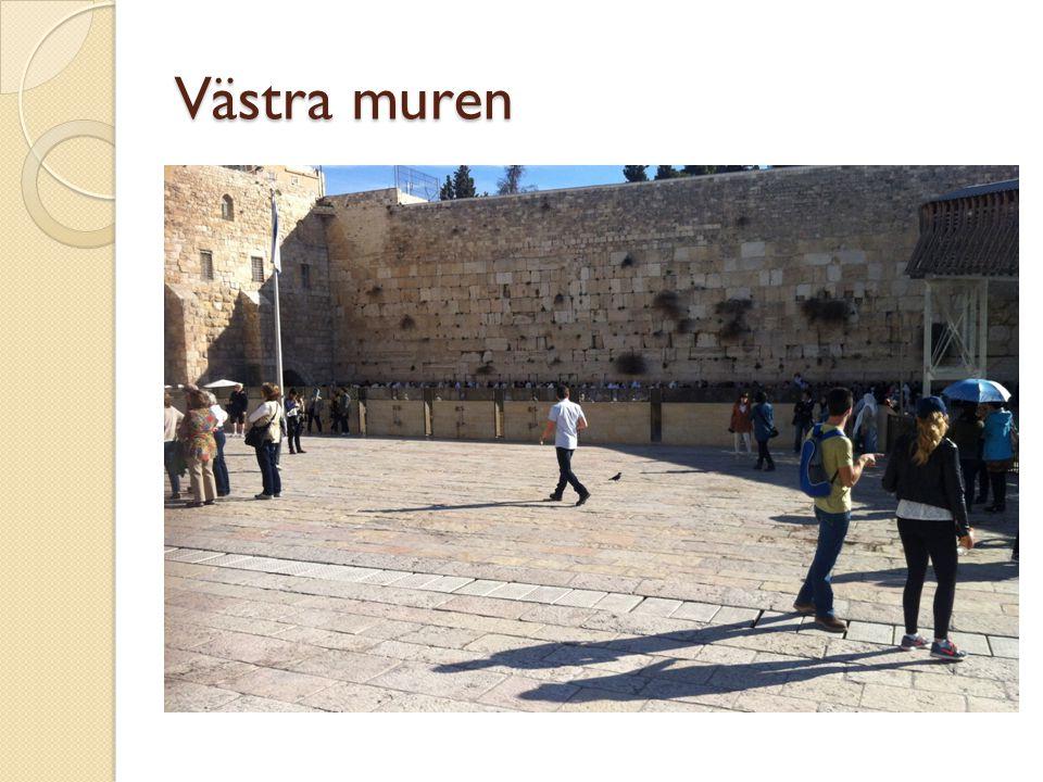 Västra muren Säg inte klagomuren