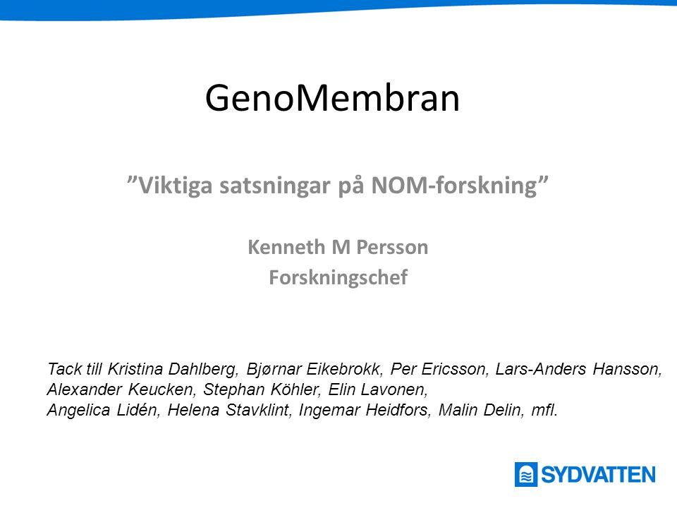 Viktiga satsningar på NOM-forskning Kenneth M Persson Forskningschef
