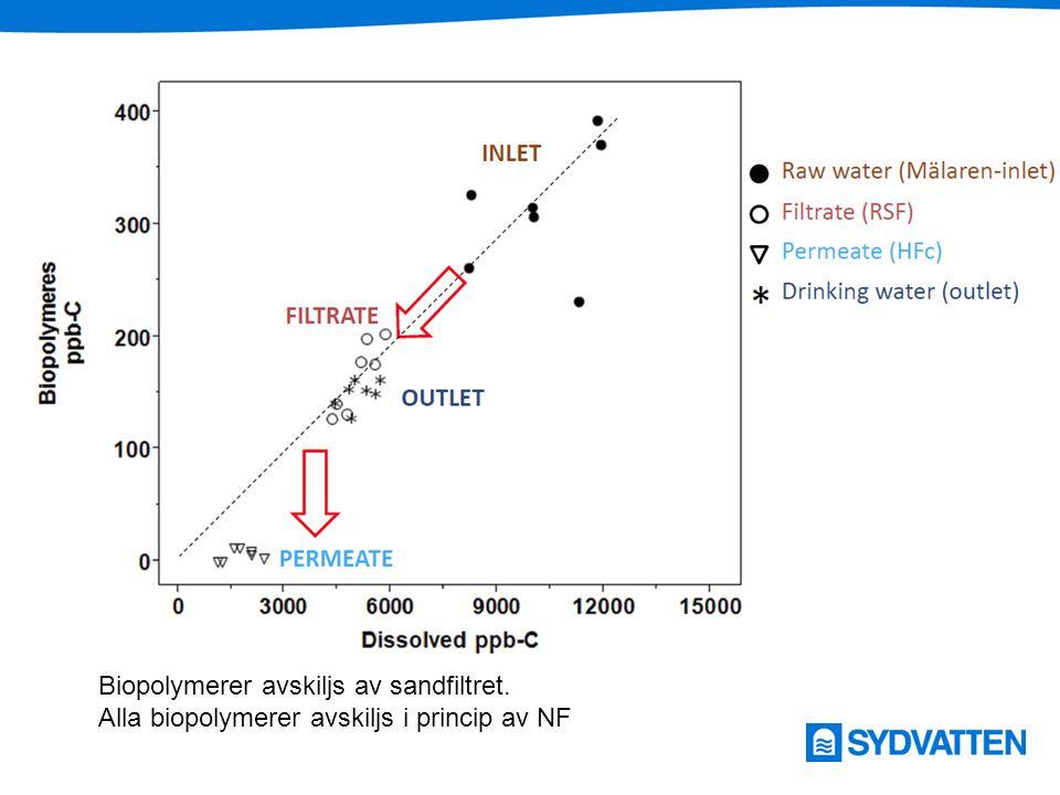 Biopolymerer avskiljs av sandfiltret.