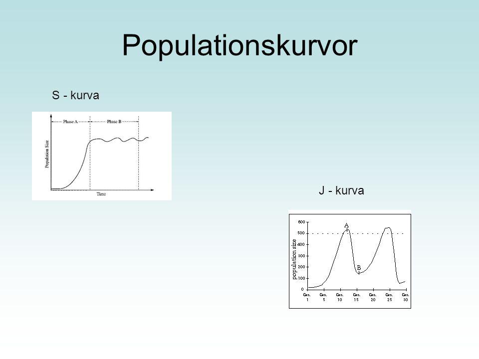 Populationskurvor S - kurva J - kurva