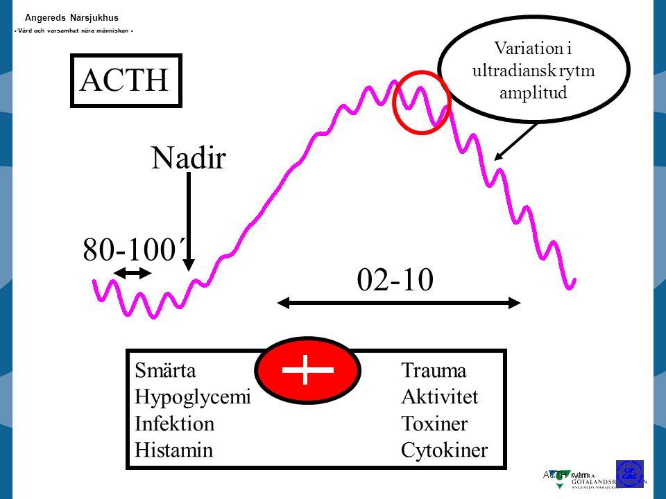 ACTH Nadir 80-100´ 02-10 Smärta Trauma Hypoglycemi Aktivitet