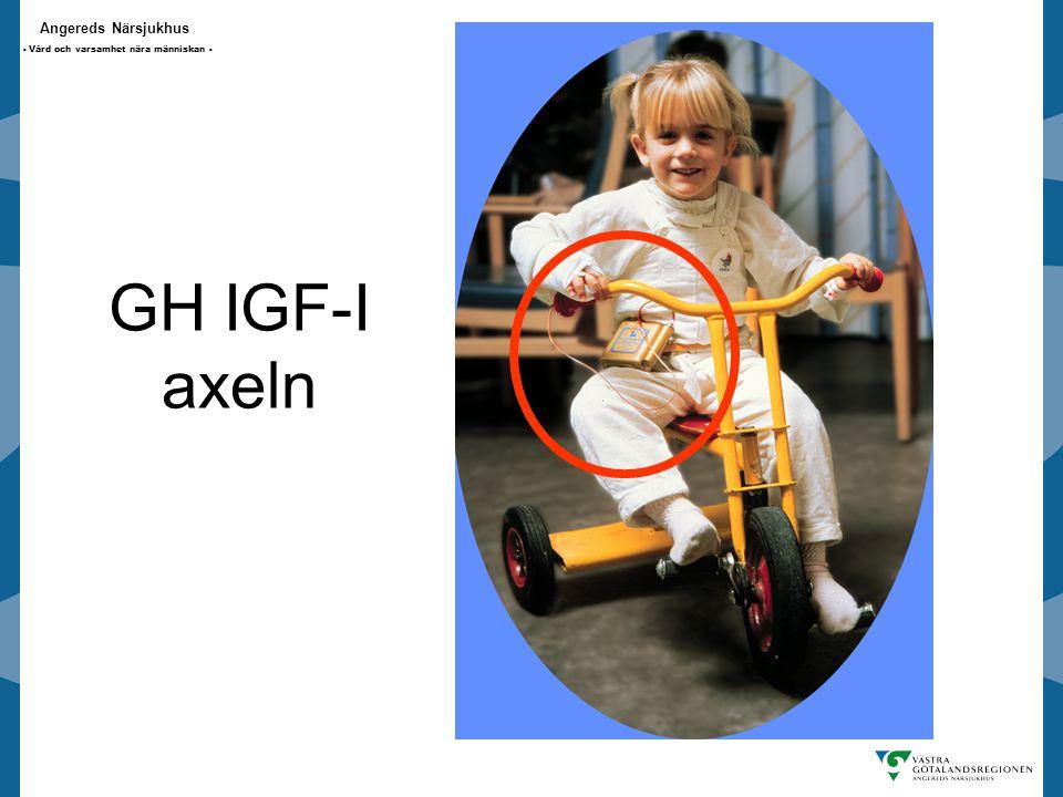 GH IGF-I axeln