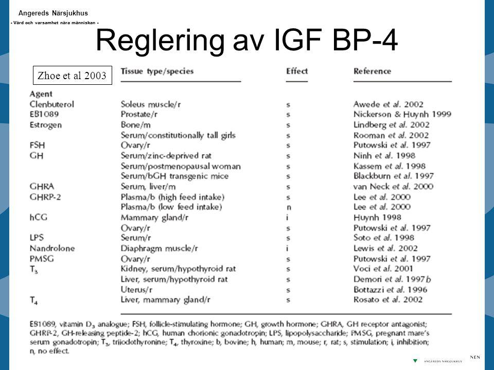 Reglering av IGF BP-4 Zhoe et al 2003