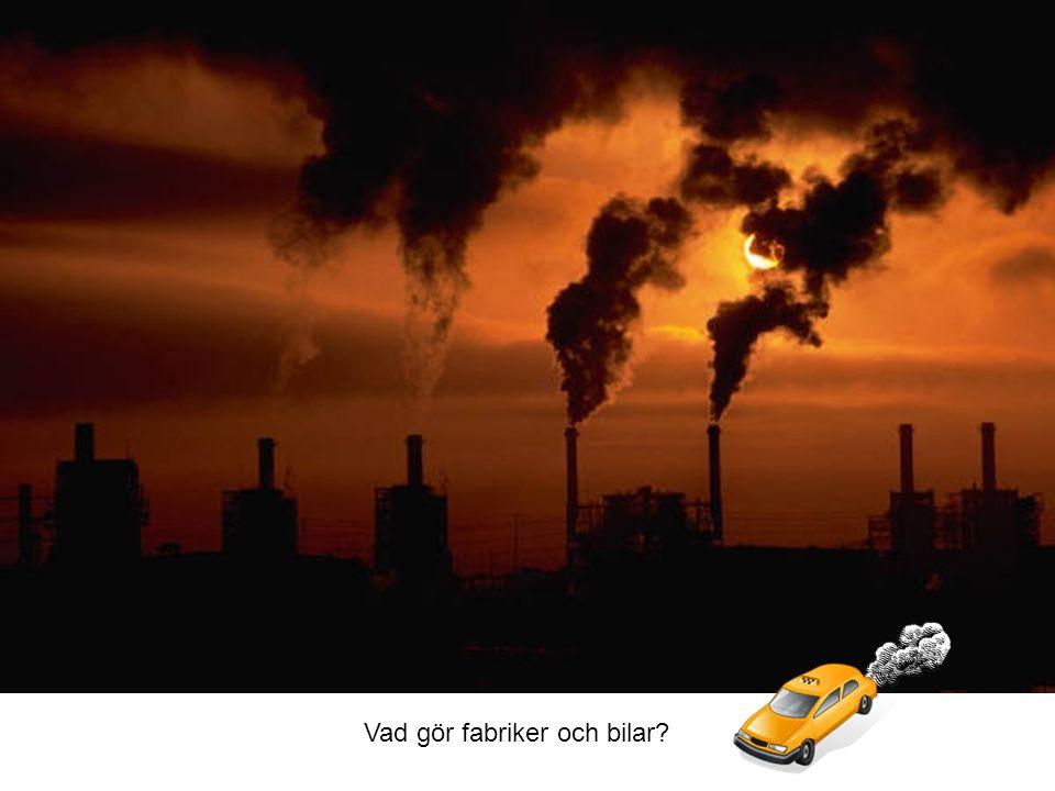 Vad gör fabriker och bilar