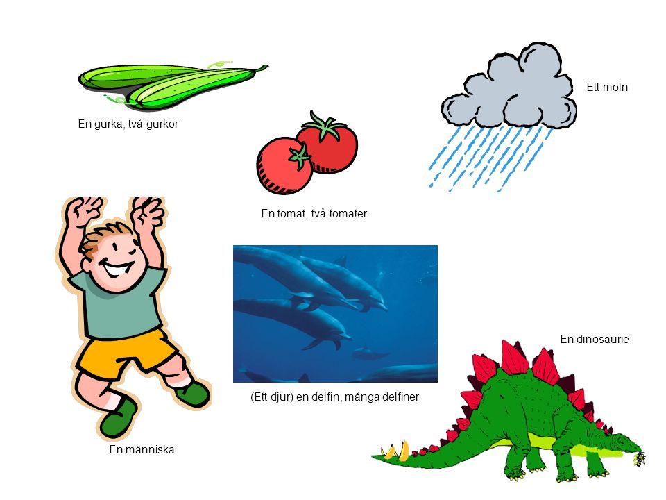 Ett moln En gurka, två gurkor. En tomat, två tomater. En dinosaurie. (Ett djur) en delfin, många delfiner.