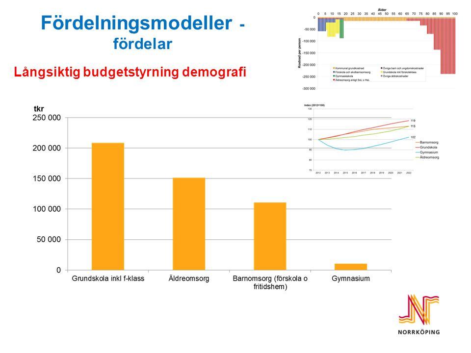 Långsiktig budgetstyrning demografi