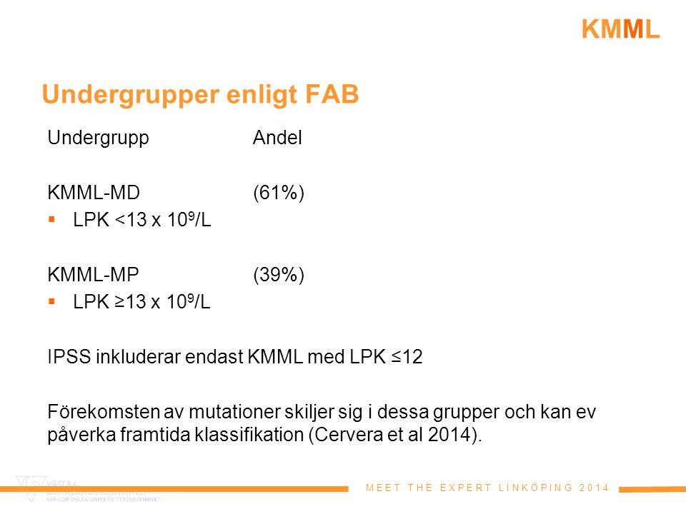 Undergrupper enligt FAB
