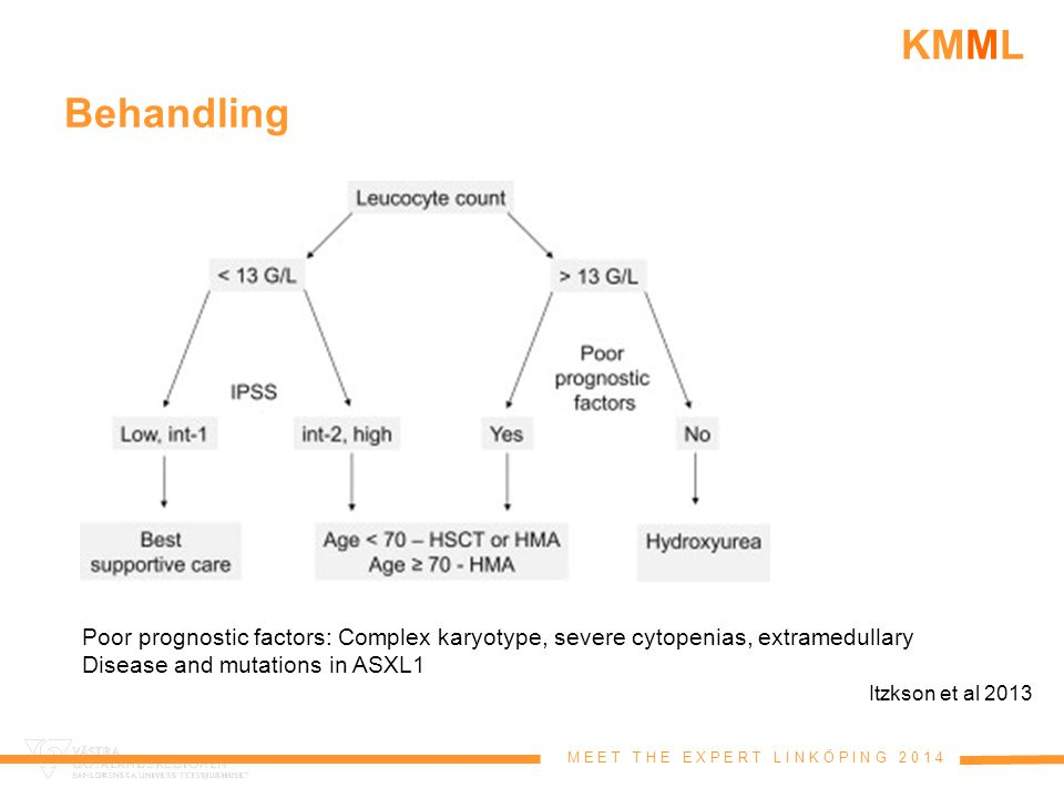 Behandling Poor prognostic factors: Complex karyotype, severe cytopenias, extramedullary. Disease and mutations in ASXL1.