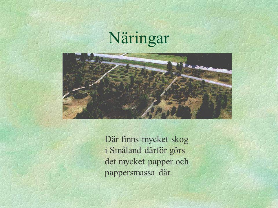 Näringar Där finns mycket skog i Småland därför görs det mycket papper och pappersmassa där.