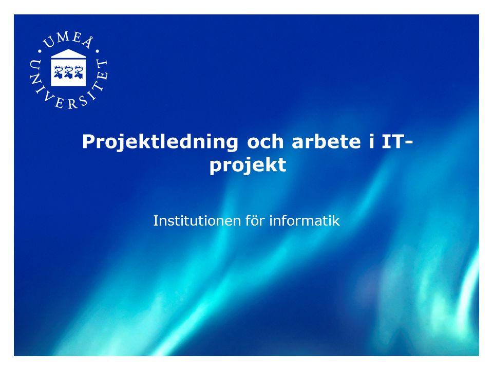 Projektledning och arbete i IT-projekt