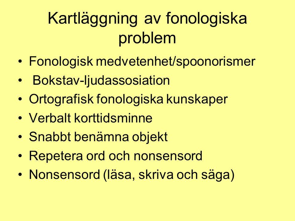 Kartläggning av fonologiska problem