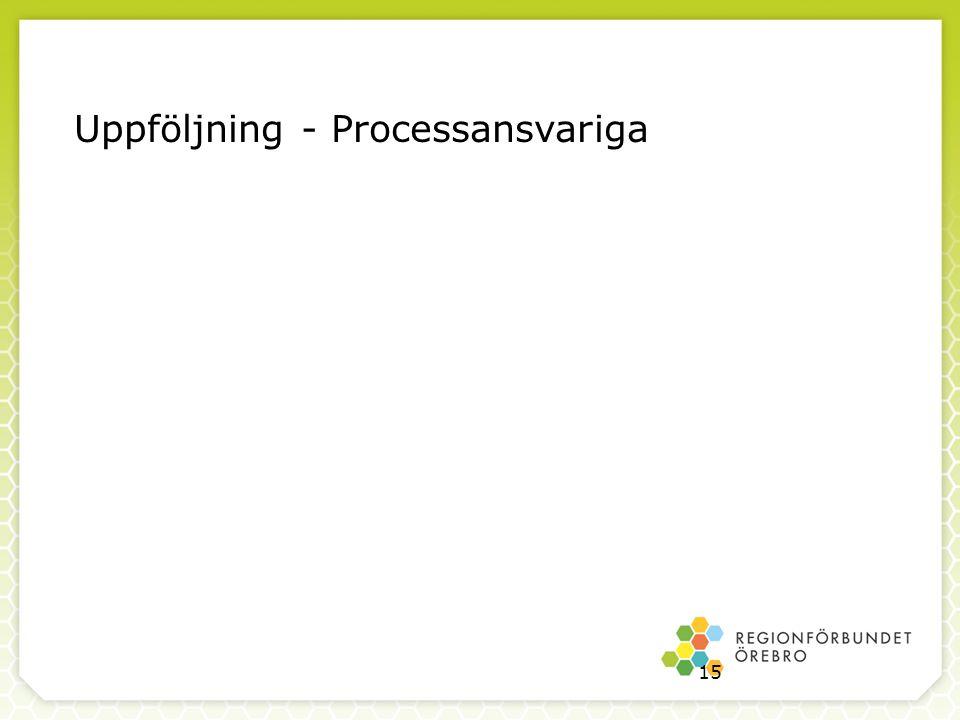Uppföljning - Processansvariga