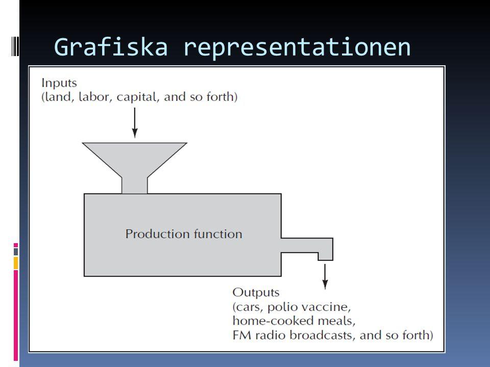 Grafiska representationen