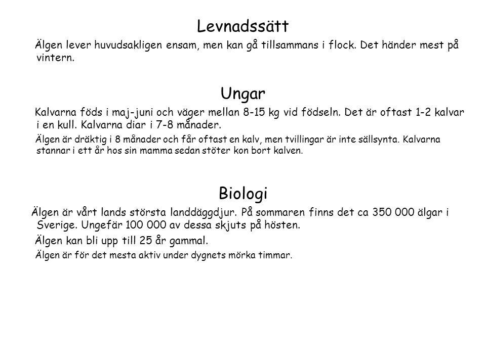 Levnadssätt Ungar Biologi