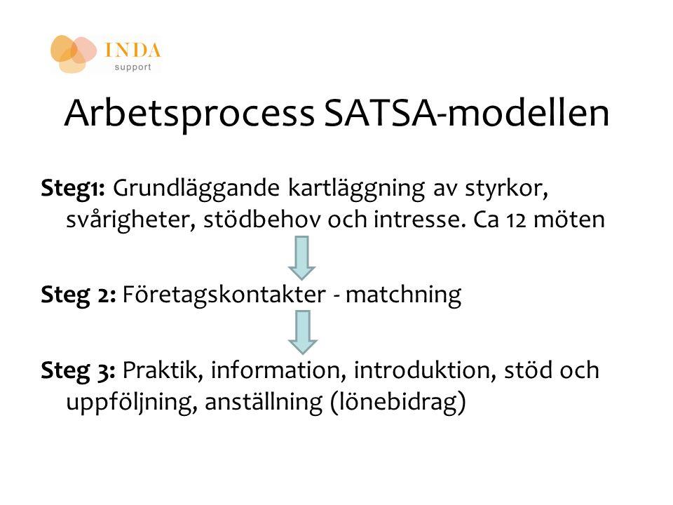 Arbetsprocess SATSA-modellen