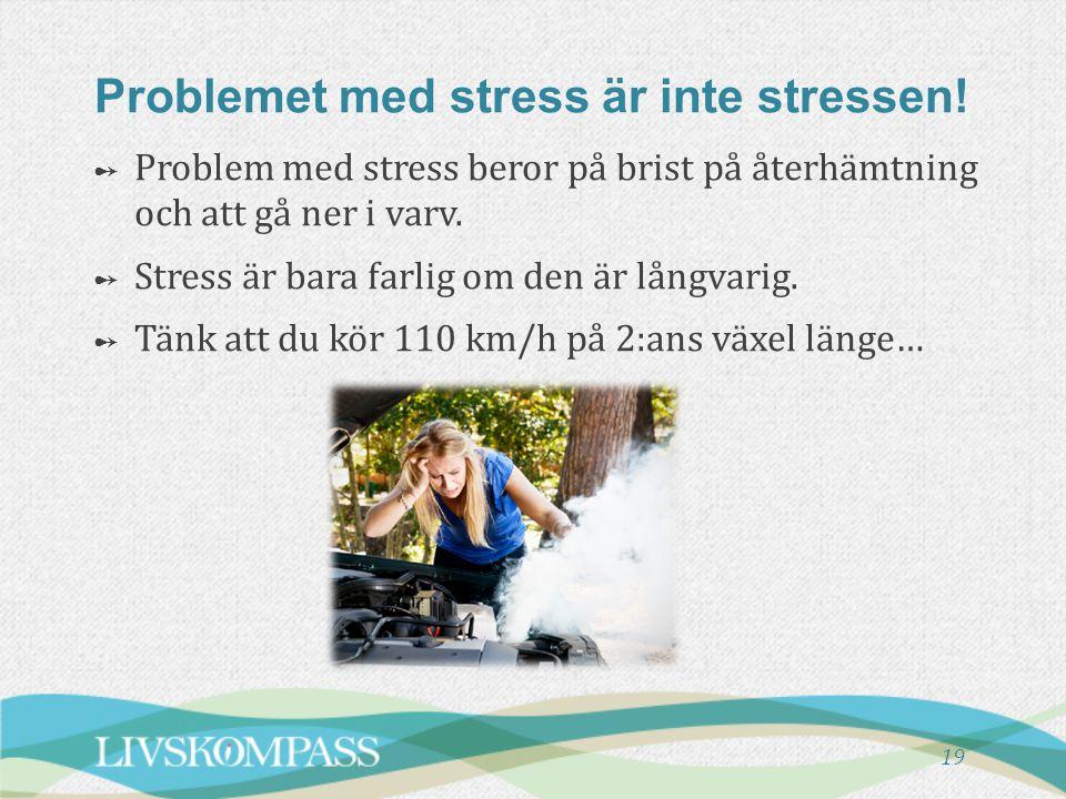 Problemet med stress är inte stressen!