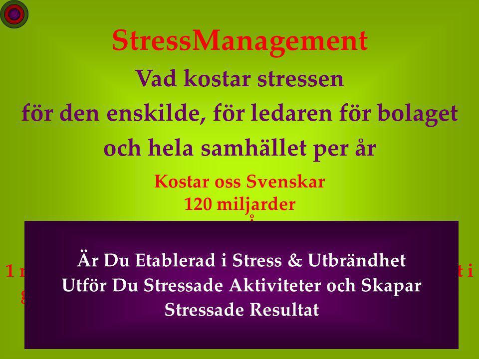 StressManagement Vad kostar stressen