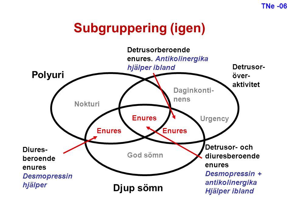 Subgruppering (igen) Polyuri Djup sömn TNe -06 Detrusorberoende