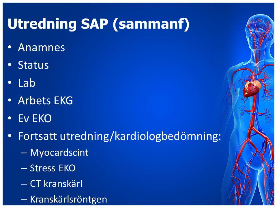 Utredning SAP (sammanf)
