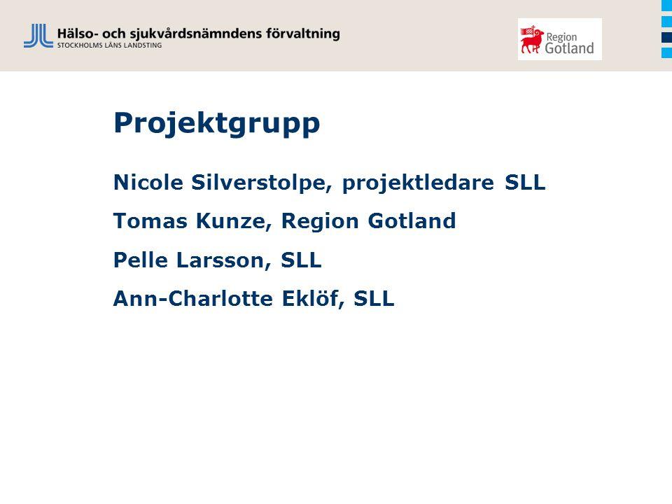 Projektgrupp Nicole Silverstolpe, projektledare SLL